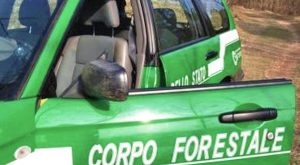 forestale_corpo_auto
