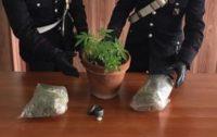 Arrestati due giovani di Scilla