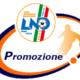 Risultati Prima Categoria di Calcio || A.C. Scillese 2012 Sogna la Promozione