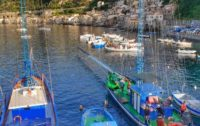 """""""Fondi per il settore pesca….I pescatori saranno pronti?"""""""